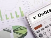 Debt & bankruptcy calculator: Lawyer